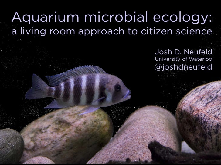 Aquarium microbial ecology:a living room approach to citizen science                             Josh D. Neufeld          ...