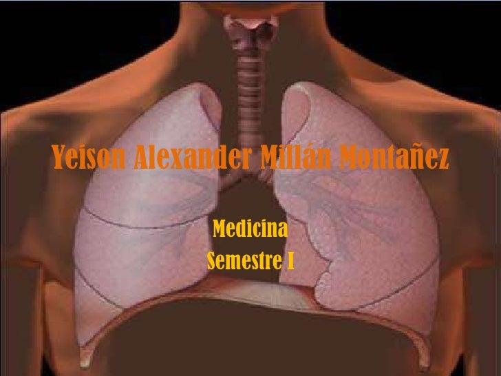 Neumonectomia. Yeison Alexander Millan Montañez semestre I  Medicina