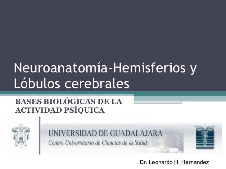 Neuroanatomía-Hemisferios y Lóbulos cerebrales   BASES BIOLÓGICAS DE LA ACTIVIDAD PSÍQUICA Dr. Leonardo H. Hernandez