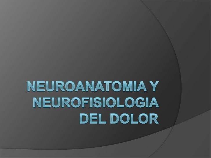 CONSIDERACIONES GENERALES   El dolor a diferencia de otras modalidades    sensoriales tiene una función esencial en    la...