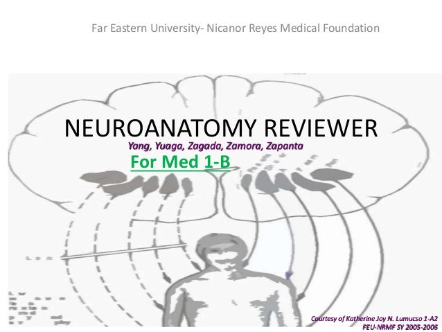 NEUROANATOMY REVIEWER For Med 1-B Far Eastern University- Nicanor Reyes Medical Foundation Courtesy of Katherine Joy N. Lu...