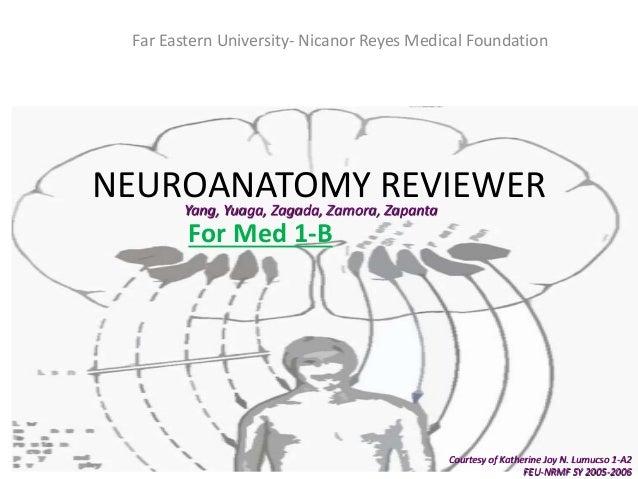 Neuroanatomy reviewer Cerebrum, Cerebellum, Pons