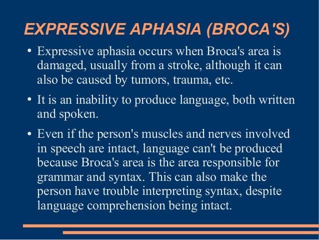 understanding aphasia essay