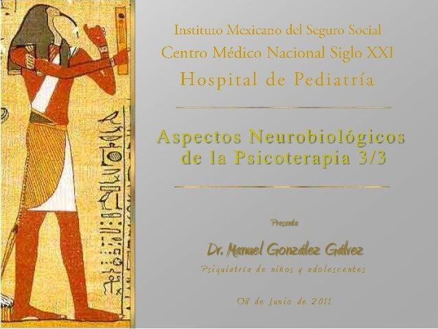 Neurobiológía de la psicoterapia 3