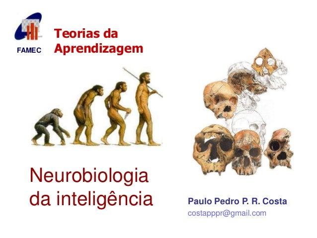 FAMEC  Teorias da  Aprendizagem  Neurobiologia  da inteligência  Paulo Pedro P. R. Costa  costapppr@gmail.com