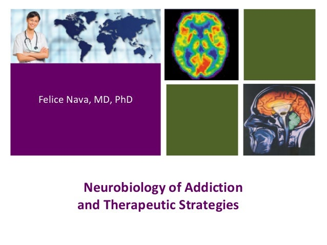 Neurobiology of Addiction and Therapeutic Strategies Felice Nava, MD, PhD