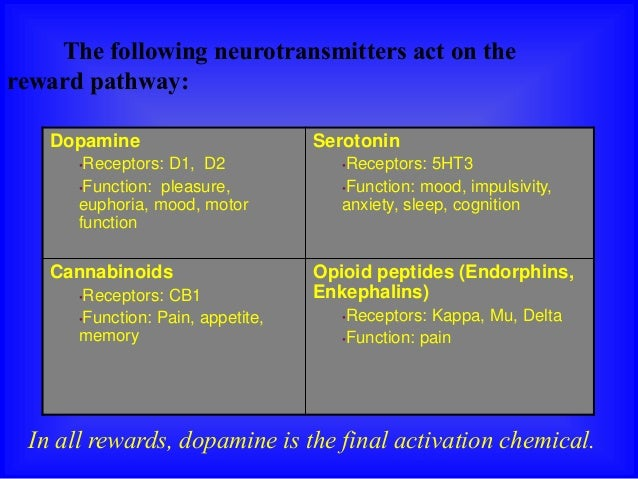 neurobiology-of-substance-dependence-10-