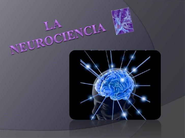 Concepto   La neurociencia estudia la estructura y la función química,    farmacología, y patología del sistema nervioso ...
