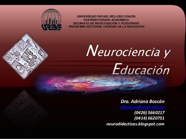 Neurociencia y Educación UNIVERSIDAD RAFAEL BELLOSO CHACÍN VICERRECTORADO ACADÉMICO DECANATO DE INVESTIGACIÓN Y POSTGRADO ...