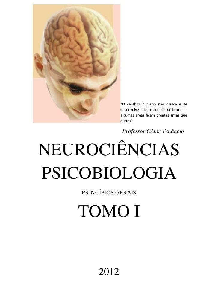 """""""O cérebro humano não cresce e se               desenvolve de maneira uniforme -               algumas áreas ficam prontas..."""