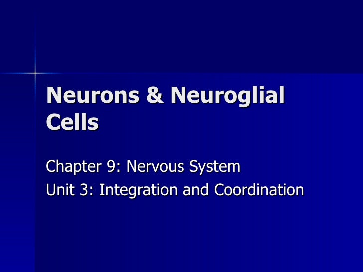 Neurons & Neuroglial Cells Chapter 9: Nervous System Unit 3: Integration and Coordination