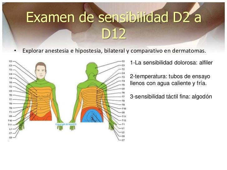 neurologia ortopedica stanley hoppenfeld pdf
