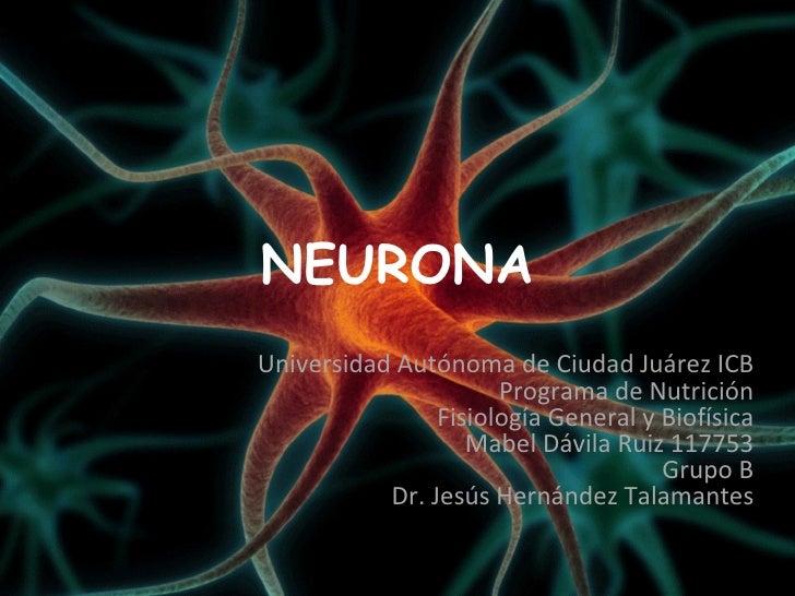 NEURONAUniversidad Autónoma de Ciudad Juárez ICB                      Programa de Nutrición                Fisiología Gene...