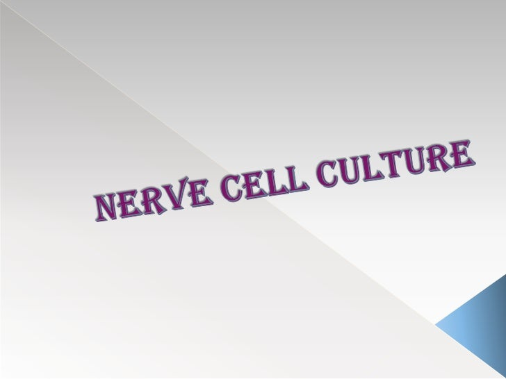    By isolating differentiated cell or tissue for    short term nonregenerative cultures   Isolating precursor cells   ...