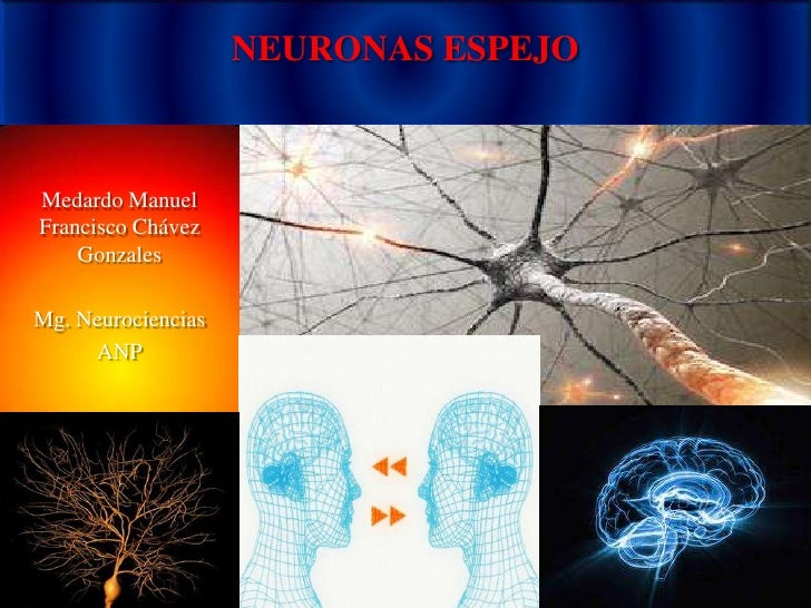 NEURONAS ESPEJOMedardo ManuelFrancisco Chávez    GonzalesMg. Neurociencias     ANP