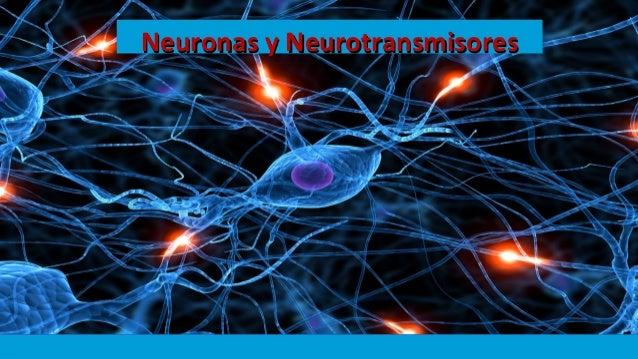 Neuronas y NeurotransmisoresNeuronas y Neurotransmisores