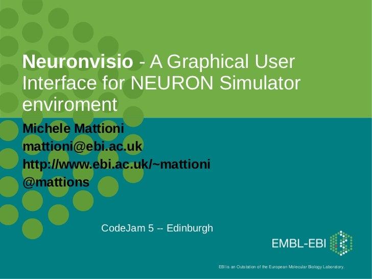 Neuronvisio codejam5