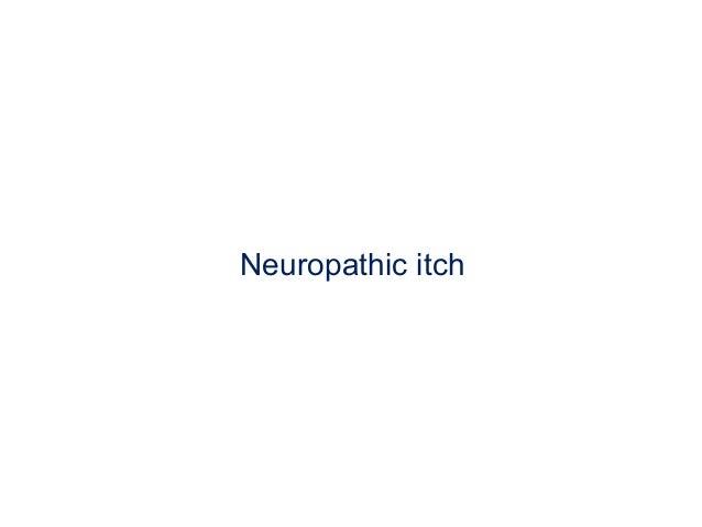 Neuropathic pruritus : Nature Reviews Neurology : Nature ...