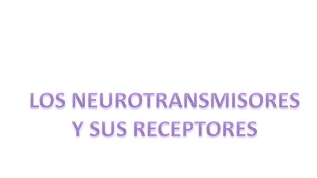 tiene     LOS NEUROTRANSMISORES    RECEPTORES                                       son                                   ...