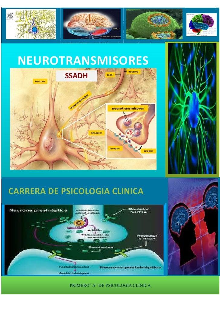 "NEUROTRANSMISORESCARRERA DE PSICOLOGIA CLINICA             PRIMERO"" A"" DE PSICOLOGIA CLINICA"