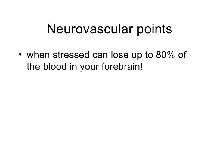 Neurovascular points <ul><li>when stressed can lose up to 80% of the blood in your forebrain! </li></ul>