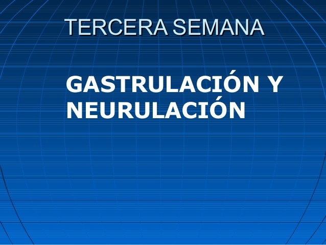 TERCERA SEMANATERCERA SEMANA GASTRULACIÓN Y NEURULACIÓN
