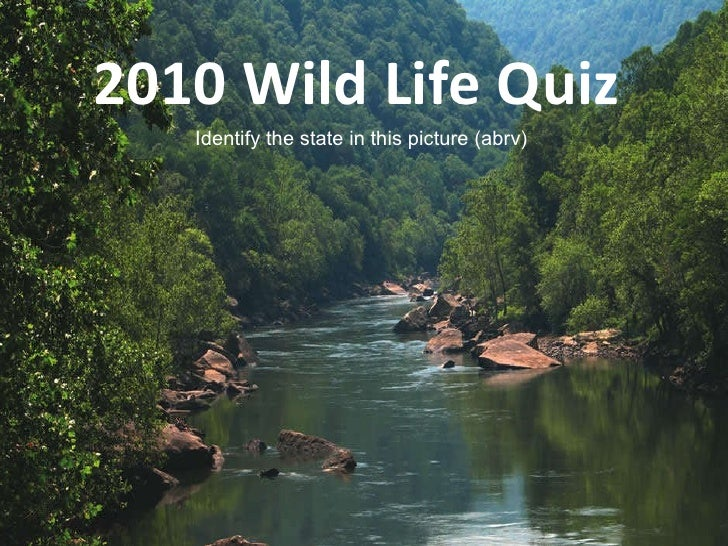 2010 Wild Life Quiz  Identify the state in this picture (abrv)
