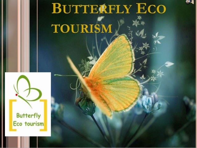 BUTTERFLY ECOTOURISM