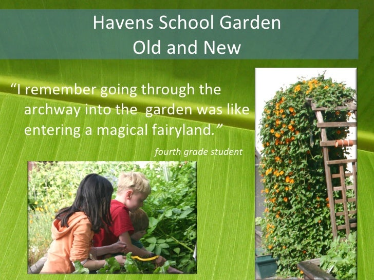 "Havens School Garden Old and New <ul><li>"" I remember going through the archway into the  garden was like entering a magic..."