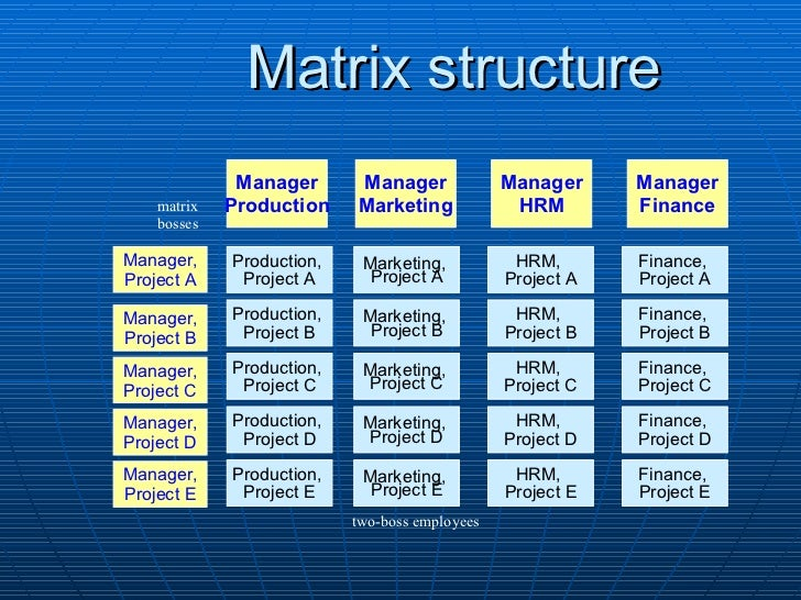 organizational structures essay