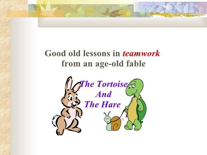 New Rabbit & Tortoise Story