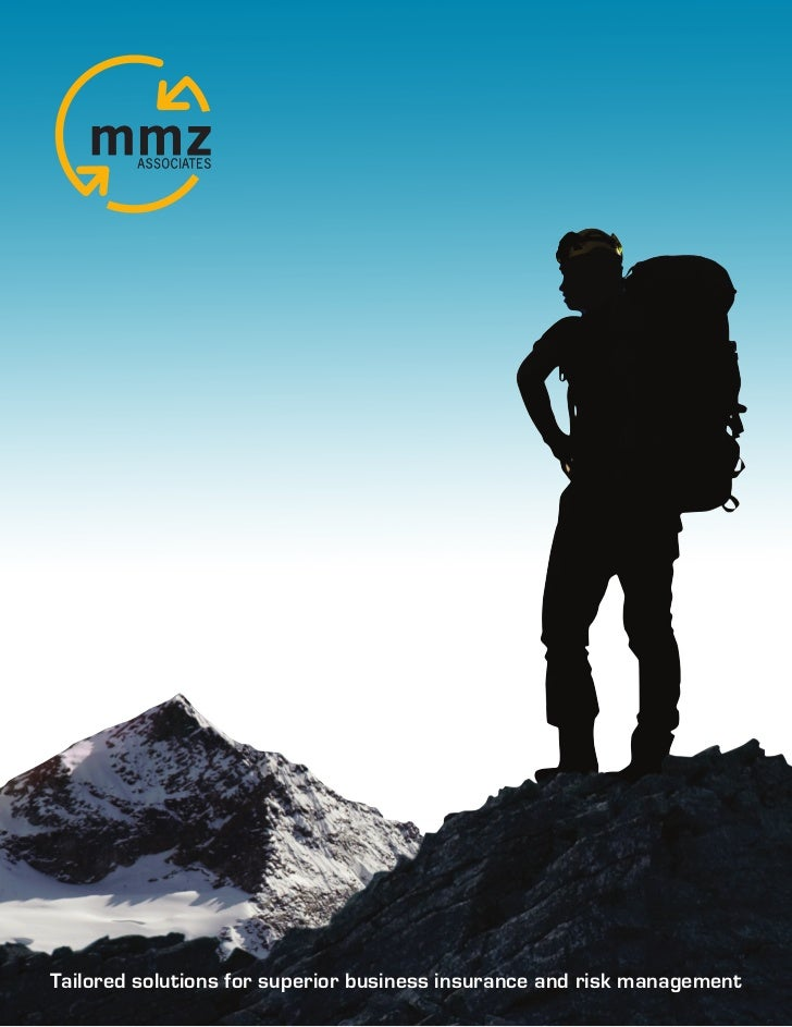 MMZ Introduction