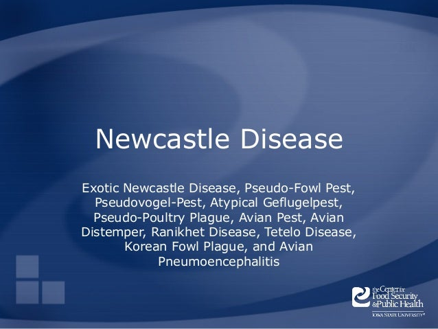 Newcastle DiseaseExotic Newcastle Disease, Pseudo-Fowl Pest,  Pseudovogel-Pest, Atypical Geflugelpest,  Pseudo-Poultry Pla...