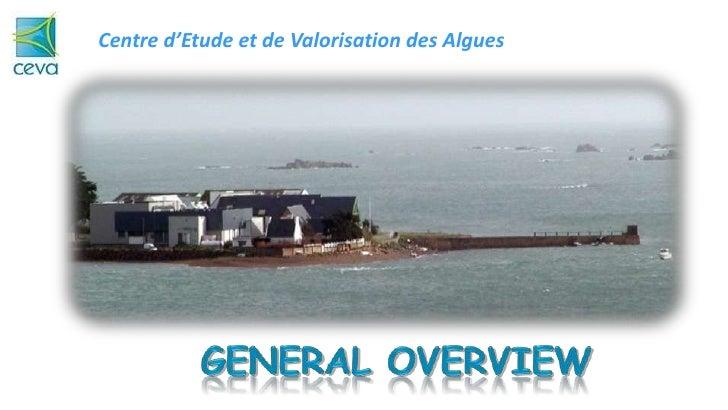 Centre d'Etude et de Valorisation des Algues<br />General Overview<br />Algae, CEVA<br />