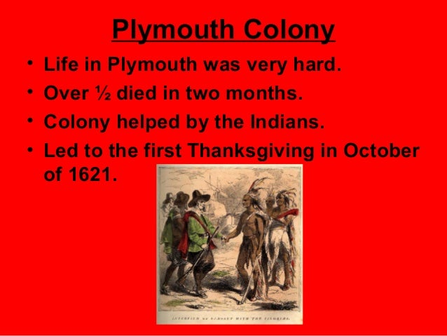 democratic characteristics of plymouth colony Of the massachusetts bay colony was simultaneously theocratic, democratic, oligarchic, and authoritarian in different ways the puritans founded the massachusetts bay colony in 1628 and wanted a well-established government, but they ended up mixing all of these together.