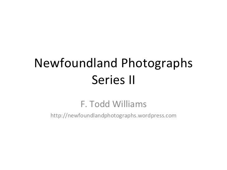 Newfoundland Photography