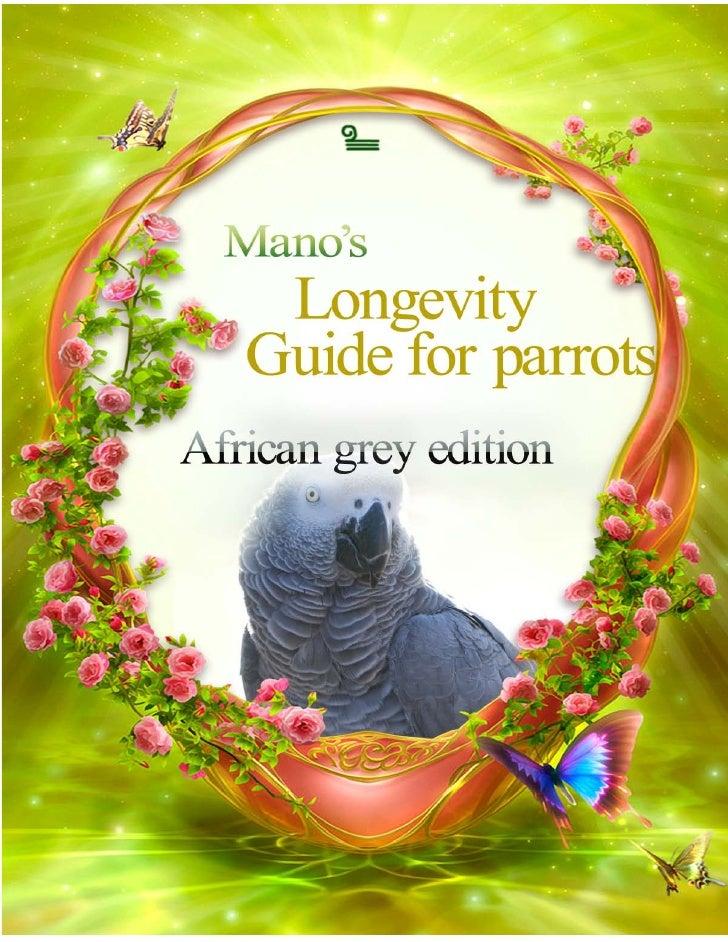 African grey ebook
