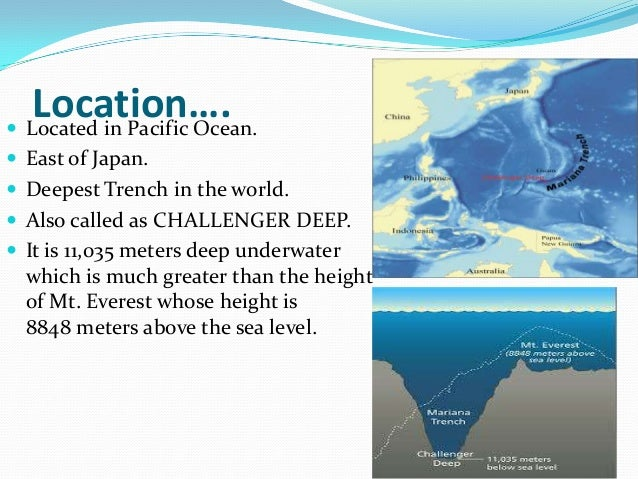 the background of the greatest water depression the mariana trench Learn facts about the mariana trench (also called the marianas trench) what is the water temperature in the mariana trench the water temperature in the.