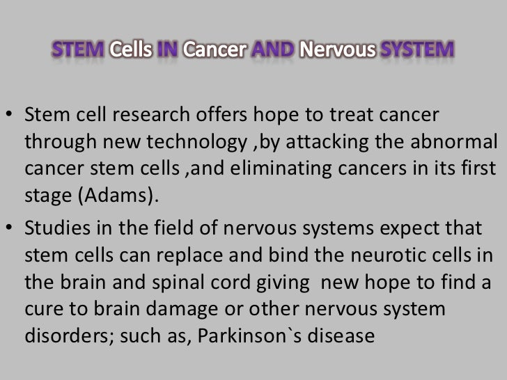stem cell research yes or no essay