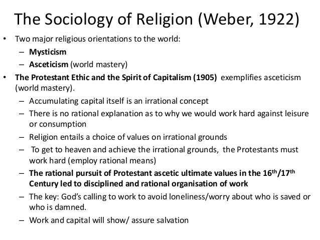 the sociology of religious organizations essay Founding fathers of sociology essay sociology is the study of social behaviour  religious essay examples  evolution of formal organizations essay.