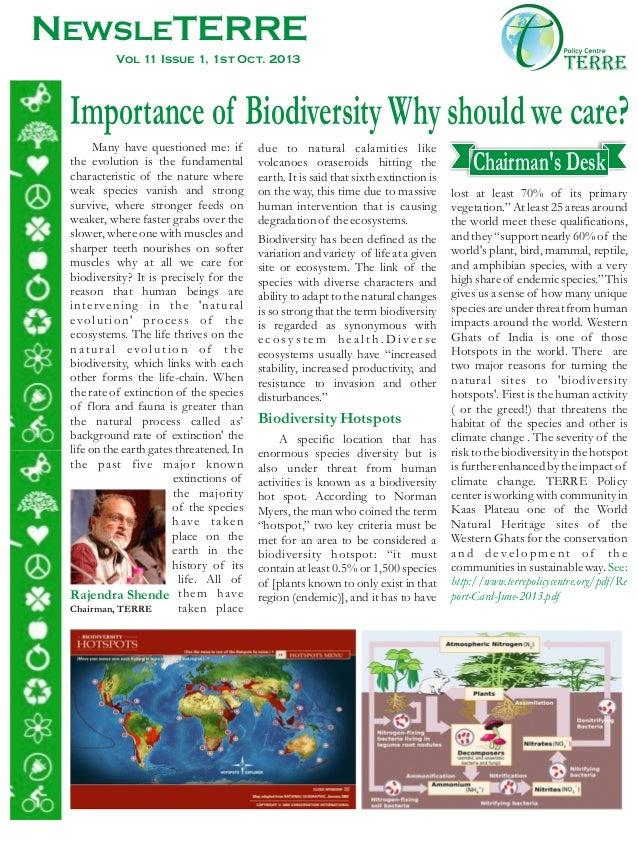 Newsleterre  01- oct 2013, issue-6