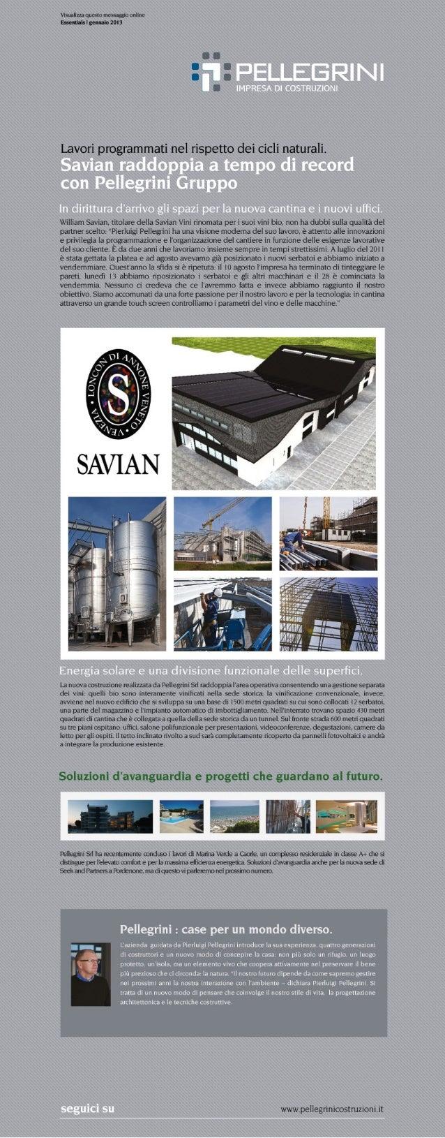 Newsletter Pellegrini costruzioni