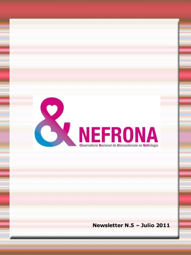 Nefrona project: newsletter 5