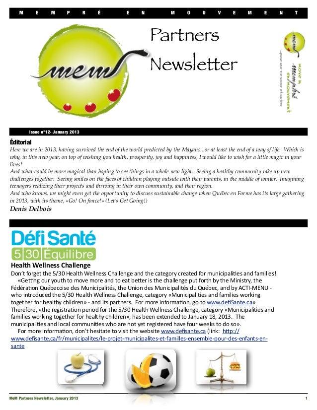 Newsletter mem january 2013   en