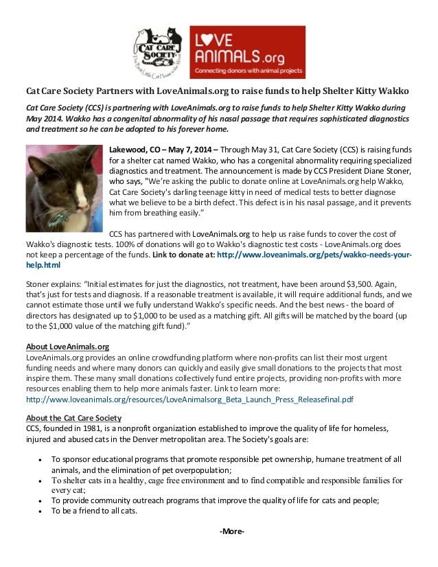 Cat Care Society Partners with LoveAnimals.org to raise funds to help Shelter Kitty Wakko