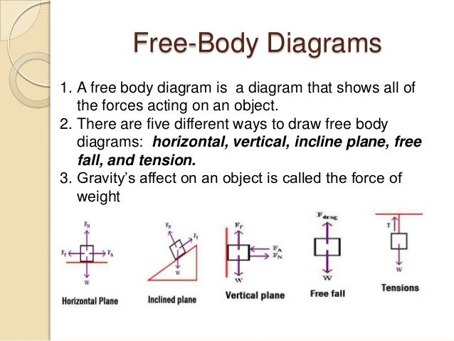 Physics Free Body Diagram Worksheet - Syndeomedia