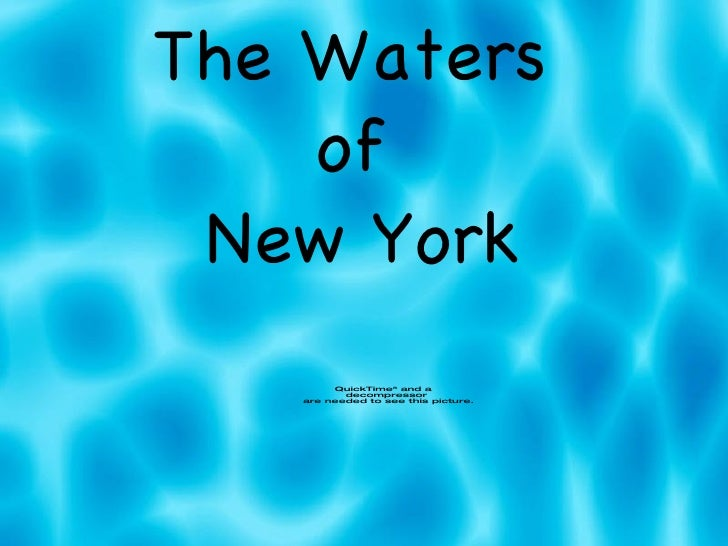 The Waters  of  New York
