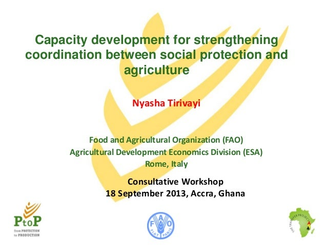 Capacity development for strengthening coordination between social protection and agriculture Nyasha Tirivayi Food and Agr...