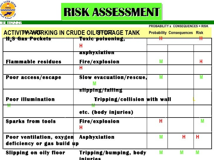 Ngi Risk Assessment