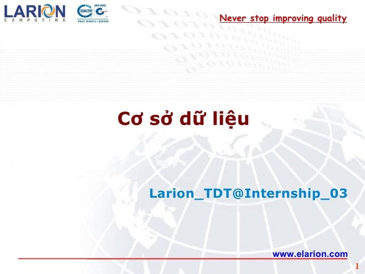 www.elarion.com Cơ sở dữ liệu [email_address] Never stop improving quality